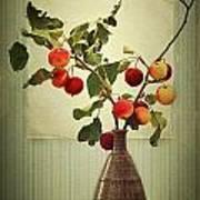 Autumn Stillife Art Print