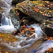 Autumn Stream North Georgia Art Print