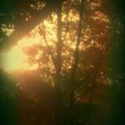 Autumn Sunsets Art Print