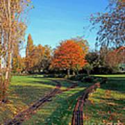 Autumn Tracks Art Print