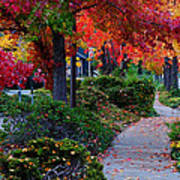 Autumn Walk In Grants Pass Art Print