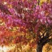 Autumn Xvii Art Print