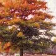 Autumn Xviii Art Print