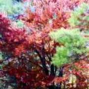 Autumn Xxxxiv Art Print