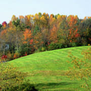 Autumnal Beauty Art Print