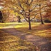 Autumnal Park Art Print