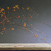 Autumns Bittersweet Art Print by Barbara Groff