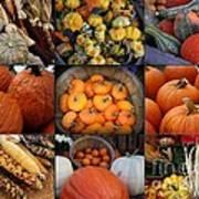 Autumn's Bounty Art Print