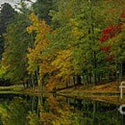 Autumns Reflection Art Print