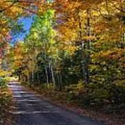 Autumns Road Art Print