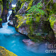 Avalanche Creek Gorge Art Print