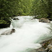 Avalanche Creek In Spring Run Off Art Print