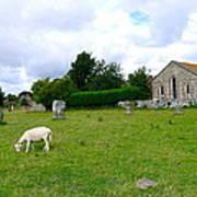 Avebury Stones And Sheep Art Print