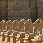 Avenue Of Sphinxes Art Print