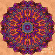 Awakening Lotus Art Print