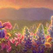 Awakening - Mt Susitna Spring - Sleeping Lady Art Print