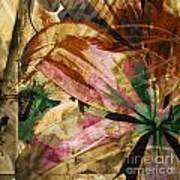 Awed II Art Print
