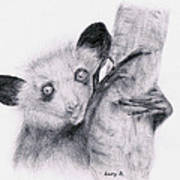 Aye-aye Art Print by Lucy D