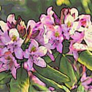 Azalea Art Art Print