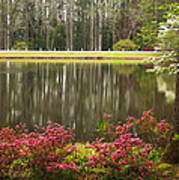 Azaleas And Reflection Pond Art Print