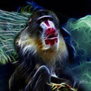Baboon 4239 - F Art Print