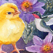 Baby Chick And Hummingbird Art Print