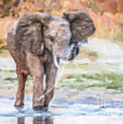 Baby Elephant Spraying Water Art Print