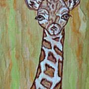 Baby Longneck Giraffe Art Print