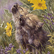 Baby Wolves Howling Art Print by Lucie Bilodeau
