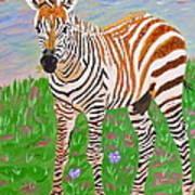 Baby Zebra Art Print