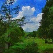 Back Yard View Art Print by Jeff Kolker