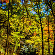 Backroads Of The Great Smoky Mountains National Park Art Print