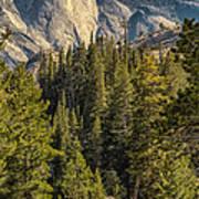 Backroads Of Yosemite Art Print