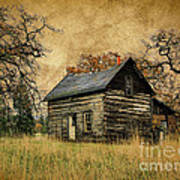 Backwoods Cabin Art Print by Steve McKinzie
