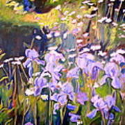 Backyard Garden IIi Art Print