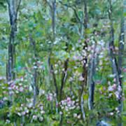 Backyard Mountain Laurel Art Print