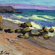 Baja Beach Art Print