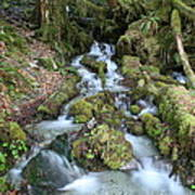 Baker Lake Steam And Waterfalls Art Print