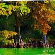Bald Cypress 3 - Digital Effect Art Print
