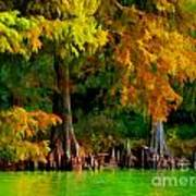 Bald Cypress 4 - Digital Effect Art Print