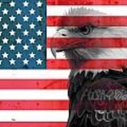 Bald Eagle American Flag Art Print