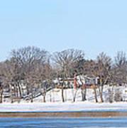 Bald Eagles In Tree In Grand Rapids Ohio Panorama Art Print
