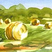 Bales In The Morning Sun Art Print by Kip DeVore