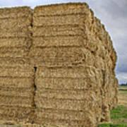 Bales Of Hay On Farmland Art Print