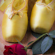 Ballet Shoes With Red Rose Art Print by Garry Gay