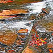 Balsam River Rocks And Leaves Art Print