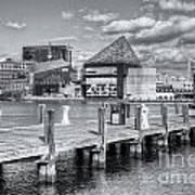 Baltimore Inner Harbor Skyline Vi Art Print