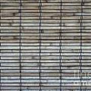 Bambo Wall Art Print