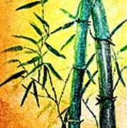 Bamboo Magic Art Print by Nirdesha Munasinghe
