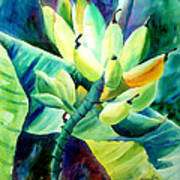 Bananas 6-12-06 Julianne Felton Art Print